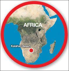 8 Best Kalahari Landscape Images Landscaping Yard Landscaping