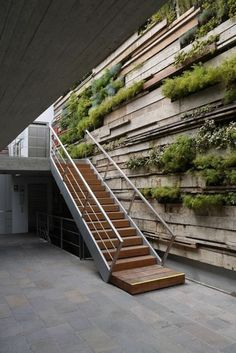 décoration japonais, mur en pierre, verdure murale, escalier d'intérieur