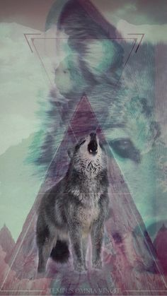 Made a wolf wallpaper for my iPhone 6