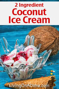 Coconut Ice Cream Recipe - 12 Easy 2 Ingredient Homemade Ice Cream Recipes