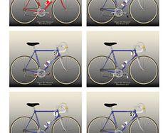 Roger De Vlaemink's 1972-1977 Paris-Roubaix Bikes