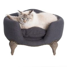 Your dog's happiness isn't for sale, but luckily our exclusive Antoinette dog beds are. Get it now for your dog at Lord Lou. Pet Beds, Dog Bed, Style Indus, Style Louis Xv, Dark Blue Grey, Pet Furniture, Animal Decor, Pretty Baby, Pet Accessories
