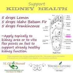 Kidney health | EssentialOilObsessed.com.  LEMON, IDAHO BALSAM FIR, FRANKINCENSE