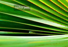 neha jain's page on about.me – http://about.me/mixandcook