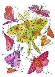 gouache painting by Holly Ward Bimba