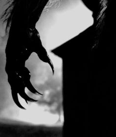 Partially transformed werewolf hand? Something like this but just the hand? Maybe it's black where it's transformed?
