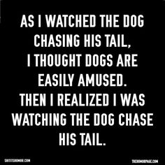 Hahaha anyone else find this to be true?! #dogs #funny #truestory #easilyamused #dogsaregreat