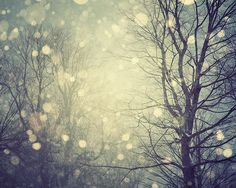 snow falling softly.