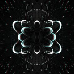i make trippy things Optical Illusion Gif, Optical Illusions, Trippy Pictures, Gif Background, Illusion Pictures, Trippy Gif, Sacred Geometry Tattoo, Fractal Images, Generative Art