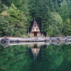 Little cabin in forest