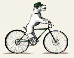 dog on bike by ~boyerzzolo on deviantART