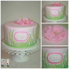 Ella's Cake First hand painted cake