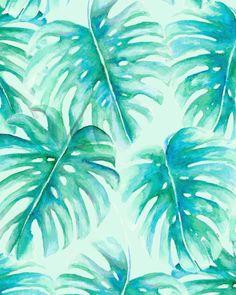 Paradise Palms Mint (For Sale)