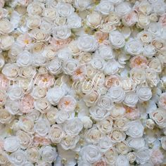Lola Blush Flower Wall