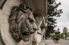 Check out this beautiful photo! Star Shape, Capital City, Romania, Places To See, Lion Sculpture, Photography, Beautiful, Check, Photograph