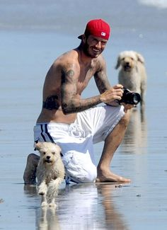 David Beckham enjoying the beach with his dogs~~~~men with their dogs always hot