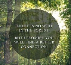 There is no Wi-Fi in the forest. But I promise you will find a better connection. ~ ~ Forest 1 Million Women Electric Forest, Running Quotes, I Promise You, Running Inspiration, Trail Running, The Great Outdoors, Life Lessons, Adventure, Image