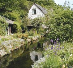 The Ravenbeck behind Ben's home. Otherwise known as a mill stream cottage beside the River Teign, a bit west of Exeter, on Dartmoor