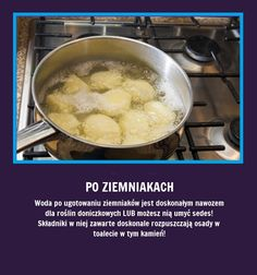 Czy wiecie, że woda po ugotowaniu ziemniaków... Bathroom Cleaning Hacks, Simple Life Hacks, Green Cleaning, Kitchen Hacks, Good Advice, Food Hacks, Healthy Life, Good Food, Food And Drink