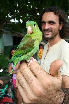 San José del Guaviare, Colombia--yo tenía un loro como ese...lo extraño demasiado...s/o to Kevin