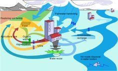 Ecosan Ecological sanitation