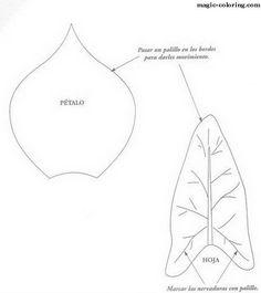 MAGIC-COLORING | Calla Lily (Zantedeschia aethiopica) flower template kála