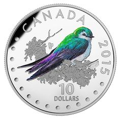 Fine Silver Coloured Coin – Colourful Songbirds of Canada: The Violet-Green Swallow Canadian Things, Canadian History, Coins For Sale, World Coins, Rare Coins, Coin Collecting, Silver Coins, Postage Stamps, Brazil