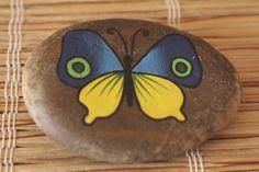 malovaný kámen - motýl ručně malovaný kámen akrylátovými barvami, zafixováno mat. lakem ve spreji, průměrná velikost 5-6cm