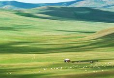 The Hulunbuir Grasslands in Mongolia