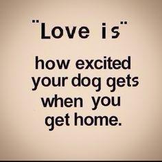 #TrueLove#XaroulhsLove:')