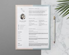 Creative CV Design & Cover Letter by This Paper Fox on @creativemarket
