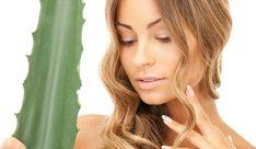 Urob si sama: Výživná maska na vlasy z aloe vera Creative Flyer Design, Organic Beauty, Oily Skin, Aloe Vera, Healthy Skin, Skin Care Tips, Royalty Free Stock Photos, Long Hair Styles, Lifestyle