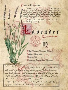 Lavender-page (a_granger) Tags: halloween book magick witch magic spells halloweendecorations spellbook witchesbrew grimoire bookofshadows witcheskitchen