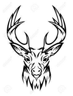 24 Best Animal Tattoo Drawings Images Design Tattoos Drawings