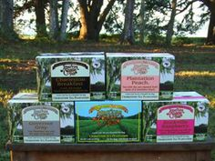 Charleston Teas from South Carolina at Lazy Gator Gourmet Foods, Gourmet Recipes, Myrtle Beach Shopping, Teas, South Carolina, Charleston, Lazy, How To Make, Cup Of Tea