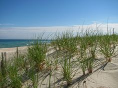 Feel blessed to have grown up at the Jersey Shore - Long Beach Island, NJ
