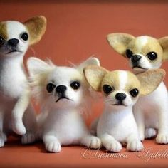 Neat felted Chihuahuas