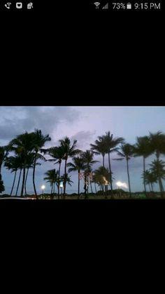 Miami Nov 2015