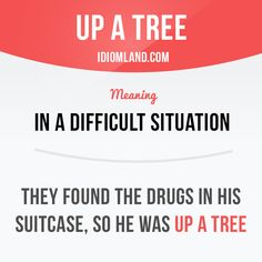 """""""Up a tree"""" means """"in a difficult situation"""". Example: They found the drugs in his suitcase, so he was up a tree. Slang English, English Idioms, English Phrases, Learn English Words, English Writing, English Lessons, English Grammar, Teaching English, English Language"""