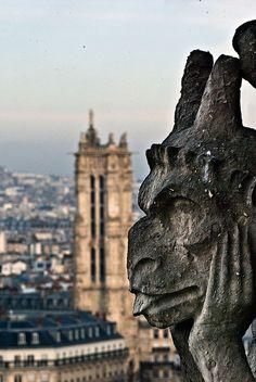 Gargoyle, Galerie des Chiméres, Notre dame de Paris