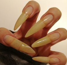 Long Natural Nails, Curved Nails, Beauty, Beauty Illustration