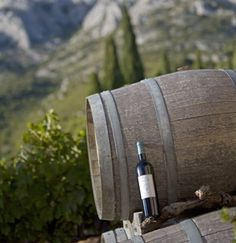One of our favorite artisanal products from Provence indeed: wine! © José Nicolas.