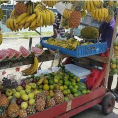 Your local fruit stand. What would you like?  -------------------------------------------- Tag a friend!  #AffluentEvents #AffluentJamaica #CheckOutJamaica #Jamaica #That876Life #VisitJamaica #ViewJamaica #Travel #BestVacations #OchoRios #Kingston #Negril #MontegoBay #Portland #Beach #Sunshine #Jamrock #JamDung #MadeInJamaica #Yaadie @fluffymisskitty --------------------------------------------  Twitter @AffluentJamaica  Facebook - AffluentJamaica  Instagram - @AffluentJamaica  Visit our…