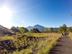 Hiking Mount Batur is an ideal way to spend a half day when in Bali, especially at sunrise when the views are intensified Bali, Sunrise, Hiking, Country Roads, Outdoor, Walks, Outdoors, Outdoor Games, Trekking