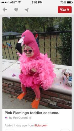 Cutest thing i have ever seen! Pink Flamingo toddler costume & I just found Kinsley's Halloween costume lmao Halloween Mono, Halloween Bebes, Cute Halloween Costumes, First Halloween, Halloween Party, Flamingo Halloween Costume, Pink Costume, Bunny Costume, Halloween Projects