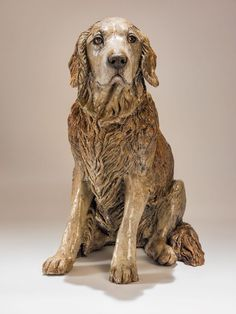 Golden Retriever dog sculpture, Poppy. This old girl had the most gentle eyes. www.nickmackmansculpture.co.uk
