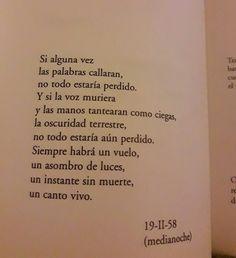 Medianoche de Susana Thénon