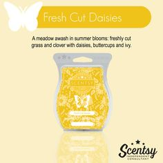 Scentsy's Fresh Cut Daises available in a wax bar, scent circle, and a room spray. https://gretajansen.scentsy.us/Buy/Search?query=fresh+cut+daisies