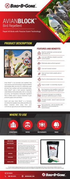 Get the facts about Avian Block™ with this creative infographic! Creative Infographic, Infographics, Protected Species, Air Conditioning Units, Data Sheets, All Birds, Shed Storage, Product Label