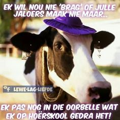 Editorial & News Stock Images - News Sports, Celebrity Photos Afrikaanse Quotes, Crazy Hats, Celebrity Photos, No Time For Me, Cowboy Hats, Funny Jokes, Celebrities, How To Wear, Image